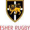 Vacancy - Head of Community Group for Esher Rugby Club