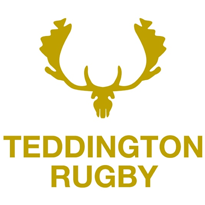 Teddington RFC  - Mini's Section