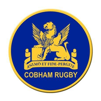 Cobham RFC - Mini's Section